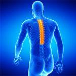 Протрузия грудного отдела позвоночника: причины, симптомы и лечение