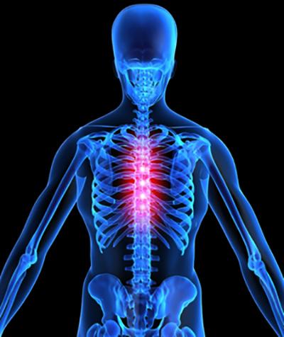 Болит грудной отдел