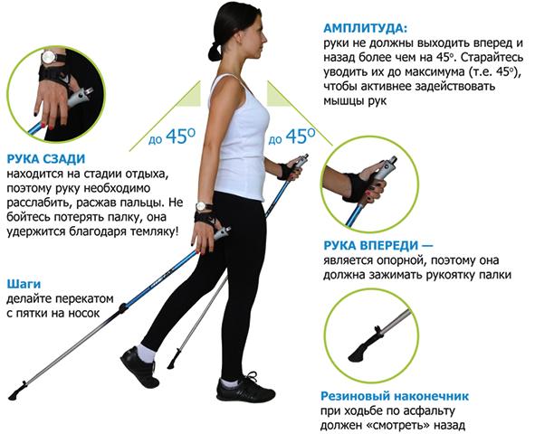 Техника финской ходьбы